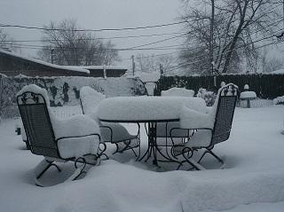 ogród w zimie